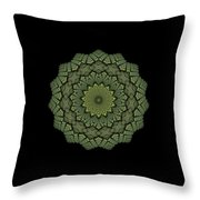 15 Symmetry Celery Bulb Throw Pillow