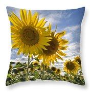 150403p078 Throw Pillow