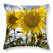150403p079 Throw Pillow