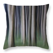 150403p261 Throw Pillow