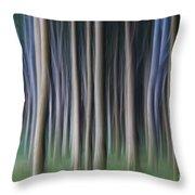 150403p262 Throw Pillow