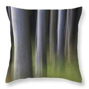 150403p264 Throw Pillow