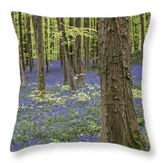 150403p367 Throw Pillow