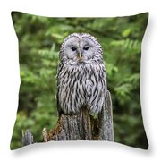 150501p127 Throw Pillow