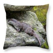 150501p133 Throw Pillow