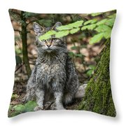 150501p138 Throw Pillow