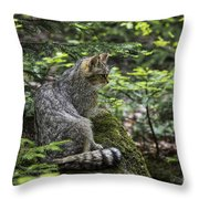150501p140 Throw Pillow