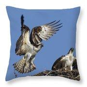 151105p350 Throw Pillow