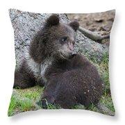 151207p127 Throw Pillow