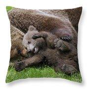 151207p136 Throw Pillow