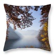 151207p156 Throw Pillow