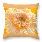 1527-004 Throw Pillow