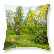Landscape Art Nature Throw Pillow