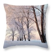 Amazing Landscape With Frozen Snow Covered Trees At Sunrise   Throw Pillow