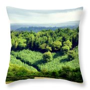 Art Landscapes Throw Pillow