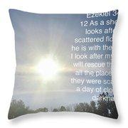 Bible Verse  Throw Pillow
