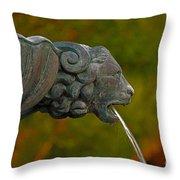 16- Fountain Throw Pillow