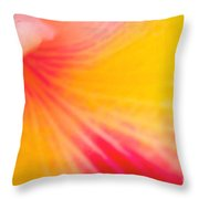 Into Cattleya Orchid  Throw Pillow