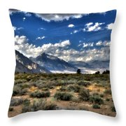 Poster Landscape Throw Pillow