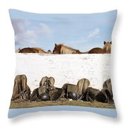 162669 Horse Walls Animals National Geographic Throw Pillow
