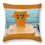 17 At Navy Pier Throw Pillow