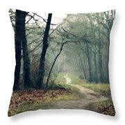 Landscape Oil Painting On Canvas Throw Pillow