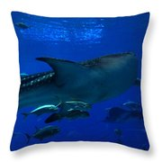 1701 Throw Pillow