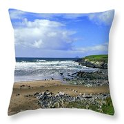 174-006-ireland Throw Pillow