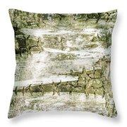 Detail Of Brich Bark Texture Throw Pillow