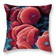 Human Red Blood Cells, Sem Throw Pillow