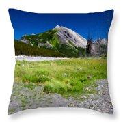 J P Landscape Throw Pillow