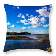Journey Home Throw Pillow