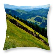 Landscape Native Throw Pillow