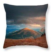 Landscape Scene Throw Pillow