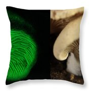 Luminescent Mushroom, Panellus Stipticus Throw Pillow