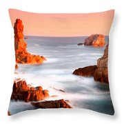 Pictures Of Landscape Throw Pillow
