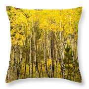 Rocky Mountain Autumn Throw Pillow