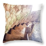 The El Yunque National Forest, Puerto Rico Throw Pillow