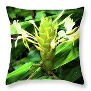 Yellow Ginger Throw Pillow