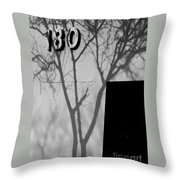 180 Throw Pillow