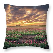 180 Degree View Of Sunrise Over Tulip Field Throw Pillow
