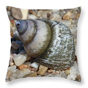 169 Throw Pillow
