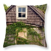 1890s Pinapple House Throw Pillow