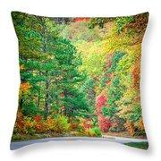 Autumn Season On Blue Ridge Parkway Throw Pillow