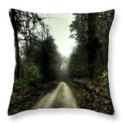 Landscape Picture Throw Pillow