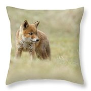 Red Fox Cub Throw Pillow