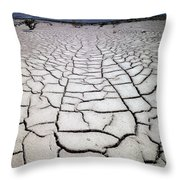 1a6832 Mud Cracks In Death Valley Throw Pillow