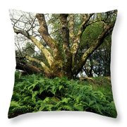 1b6339 Frens And Oaks On Our Mountain Throw Pillow