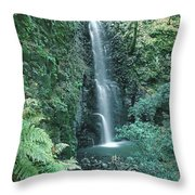 1b6351 Diamond A Waterfall Throw Pillow