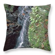 1b6353 Falls On Sonoma Mountain Throw Pillow